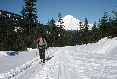 Cross country skier on a groomed path on a sunny day