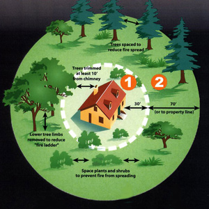 graphic show defensible space requirements