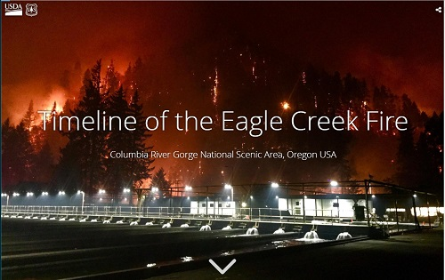 Photo of Eagle Creek Fire flames at night with lights from a nearby fishery.