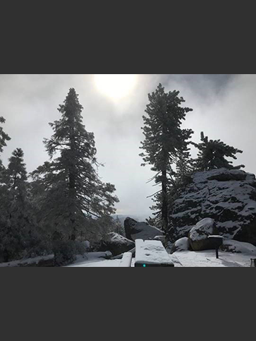 Snow on Pine Mountain - Ojai Ranger District - 12-1-18
