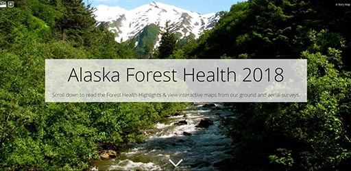Story Map of 2018 Alaska Forest Health Highlights.