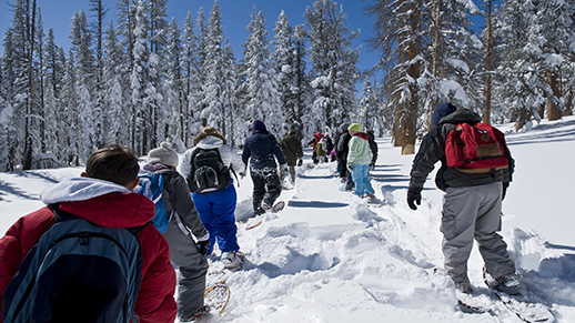 Fifth-grade students trek through the snowy forest on snowshoes.