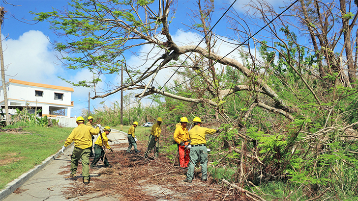 Incident responders work together with the Saipan Crew 36 to remove hazardous trees from roads.