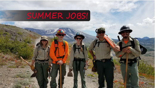 Click for info about summer jobs.