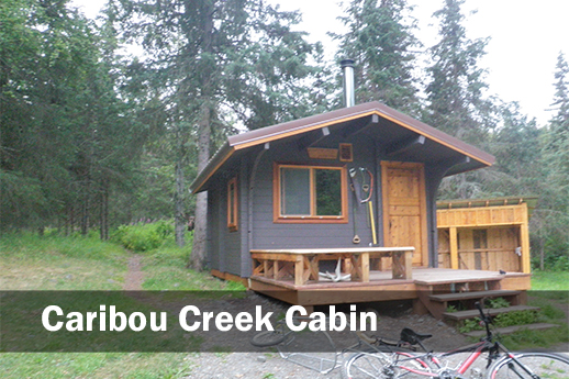 A picture of Caribou Creek cabin and the surrounding forest