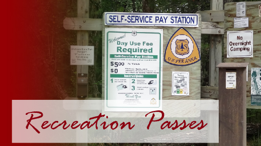 Recreation Pass information