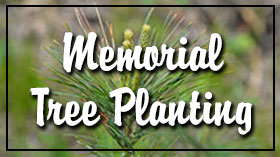 Click for memorial tree planting info.