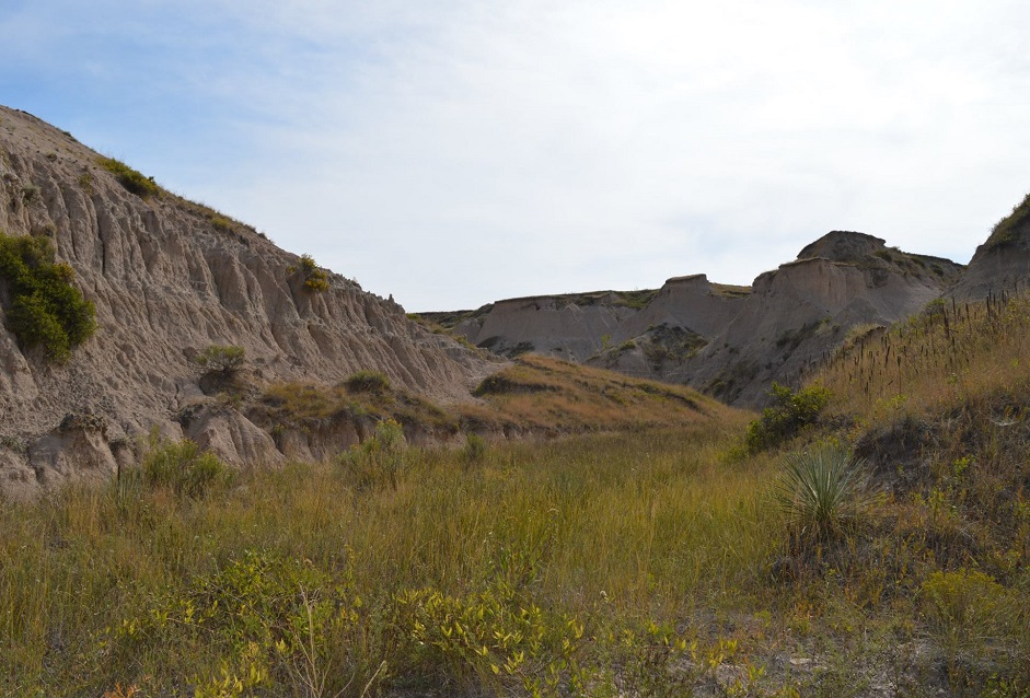 Open grassland area near unique rock formations