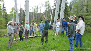 A field trip to examine a proposed project on the Beaverhead-Deerlodge National Forest
