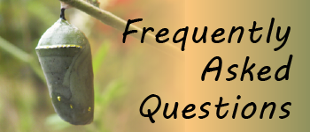 Quick Link: Frequently Asked Questions