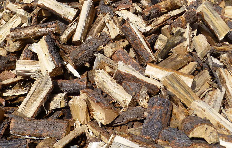 Close-up of a cut pile of ponderosa pine wood