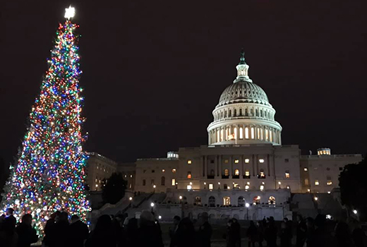 National Christmas Tree 2019.Carson National Forest News Events