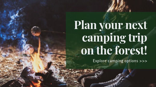 Plan your first camping trip of the year!