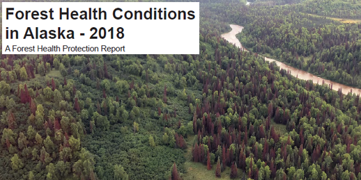 2018 Alaska Forest Health Conditions Report.