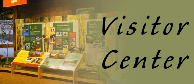 Quick Link: Visitor Center