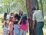 Girls engage in outdoor activities with Forest Service employees teaching them about nature.