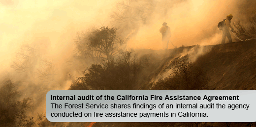 Learn more about our fire assistance payments in California.