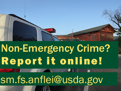 Report Non-Emergencies
