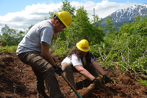 Two Forest Service interns working hard to pull up vegetation in preparation for a new trail.