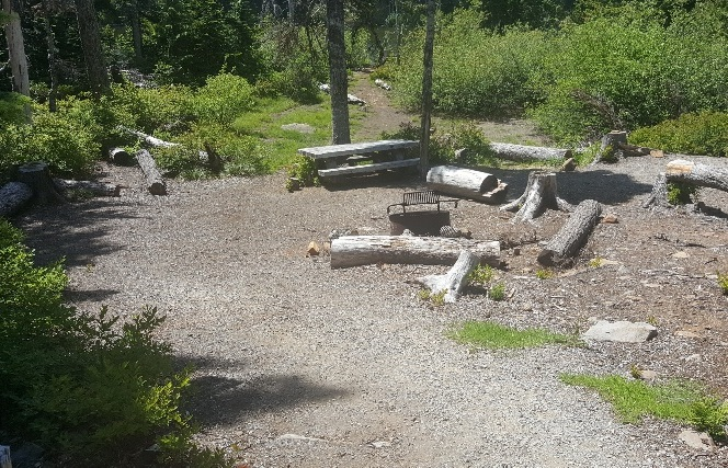 Sunny campsite with picnic table and grate