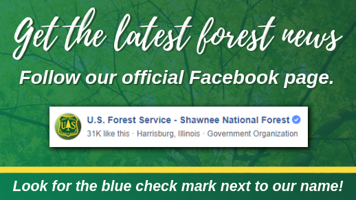 Visit our official Facebook page for official information on the forest!