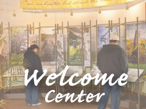 Quick Link: Welcome Center
