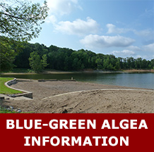 A photo of Hardin Ridge Beach with the text Blue-Green Algae Information.