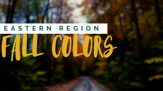 Fall Colors 2019