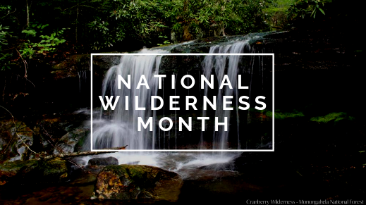 Wildnerness Month
