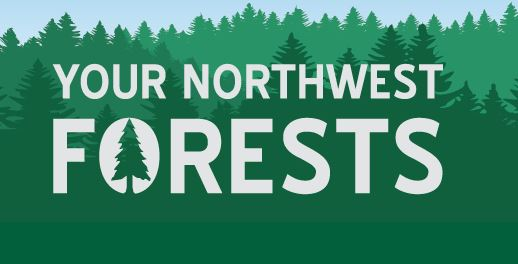 Your Northwest Forests blog logo