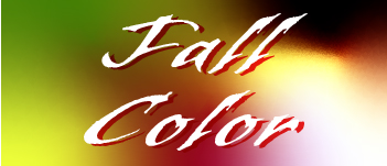 Quick Link: Fall Color