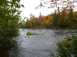 Fall Color: Presque Isle, near FR 180