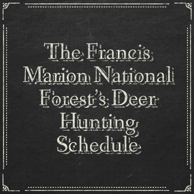 The Francis Marion National Forest's Deer Hunting Schedule