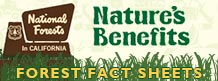 Nature's Benefits Forest Fact Sheet