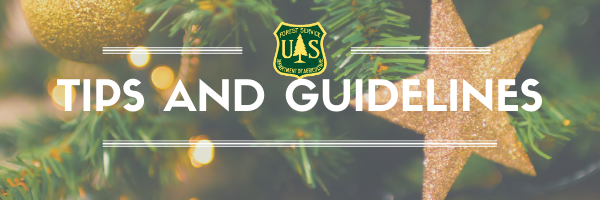 Christmas Tree Tips and Guidelines
