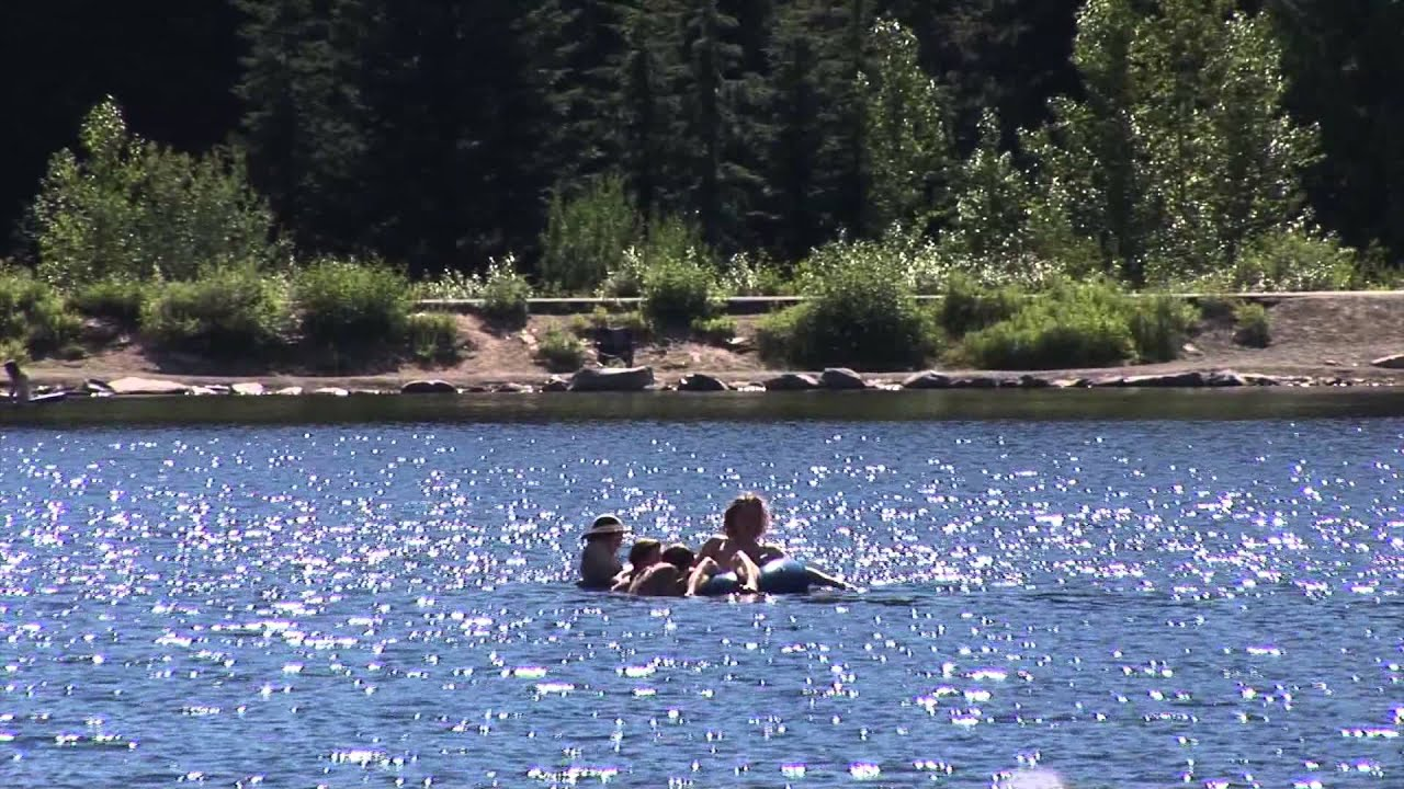 People swimming in a lake  using an innertube.