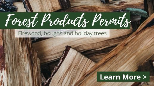 Learn more about forest product permits.