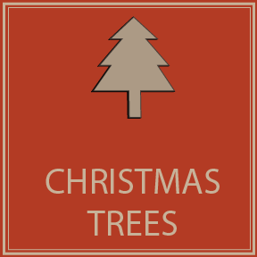 Plan Your Trip: Christmas Trees