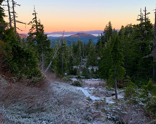 Frost covered Dude Mountain trail with sunset glow