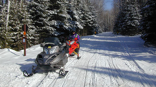 Explore snowmobiling on the forest.