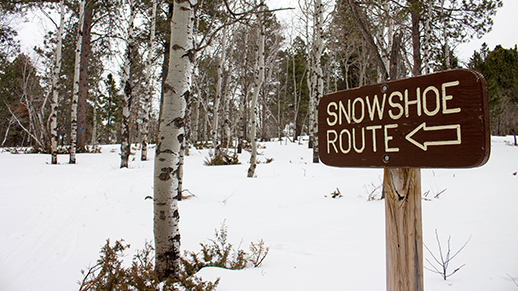 Snowshoe Route at Big Hill
