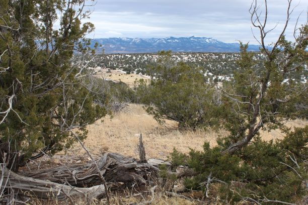 Picturesque landscape of the Magdalena Ranger District.