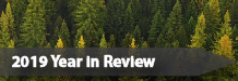 Flathead National Forest 2019 Year in Review
