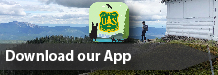 Download the Lolo National Forest App