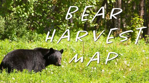 Bear Track, text: Bear Harvest Map