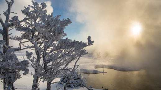 Yellowstone National Park winter scene near Mammoth Hot Spring by Neal Herbert