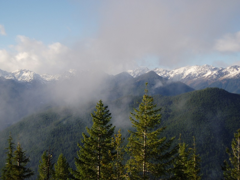 View of forested peaks with mist aruond them
