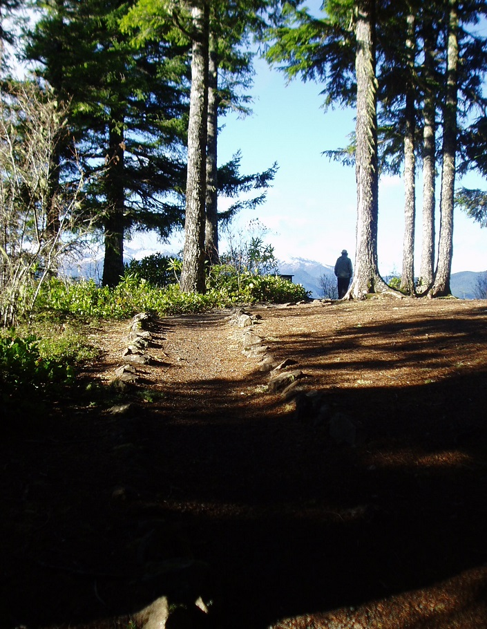 A trails leads out to an open viewpoint through douglas fir forest