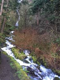 Wahkeena Falls in distance and stream cascade down the slope, February 2020.