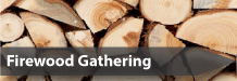 Graphic of stacked firewood with the text firewood gathering.